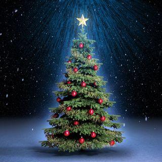 Navidad 2016. Felicitaciones variadas