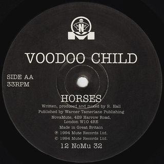 Voodoo Child - Horses