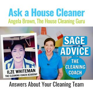 Wisdom From The Cleaning Coach Ilze Whitman