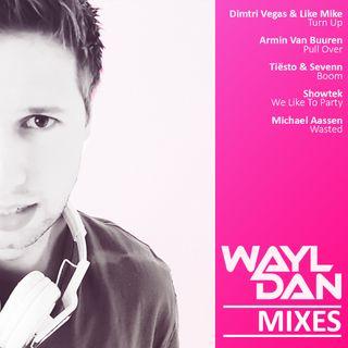WAYLDAN | BOOTLEG | MIXES