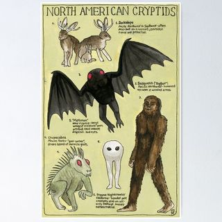 The Top 5 Cryptids in North America