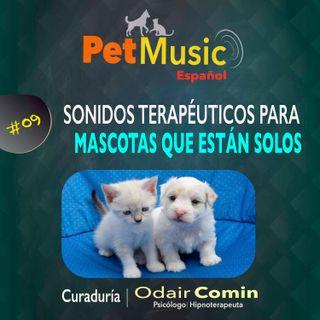 #09 Sonidos Terapéuticos para Mascotas Solos
