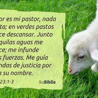 Jesús el buen Pastor