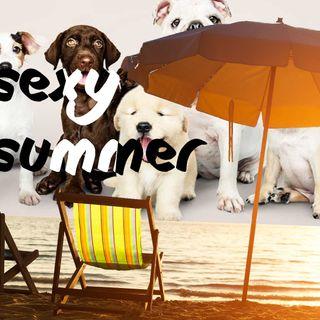 Perros, perros, perros | Sexy Summer 4 (24/07/21)