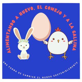 Alimentando a huevo, al conejo y a la gallina