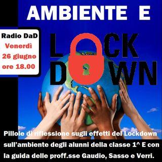 1E - LOCKDOWN E AMBIENTE