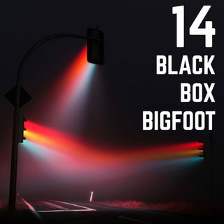 Stop Light Stories 14 - Black Box Bigfoot