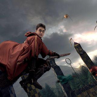 Approfondimenti - Quidditch Babbano