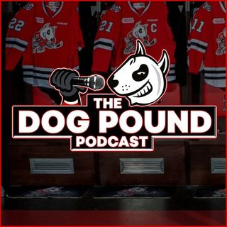The Dog Pound Podcast | IceDogs GM Joey Burke Interview