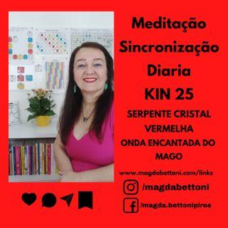 MEDITAÇÃO DE SINCRONIZAÇÃO - KIN 25- Serpente Cristal Vermelha