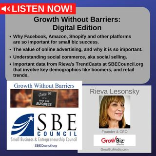 Growth Without Barriers - DIGITAL EDITION: Rieva Lesonsky, GrowBiz Media: Mastering Facebook, Amazon & other marketing platforms.