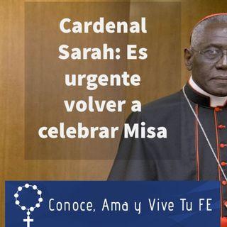 Episodio 355: 🙂 Cardenal Sarah: ✝ Es urgente volver a celebrar Misas con fieles sin experimentos rituales 🙏