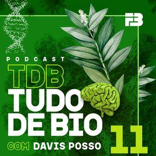 TDB Tudo de Bio 011 - Diabetes