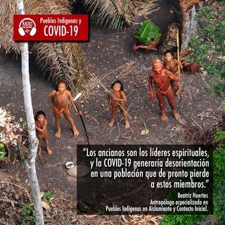 Pueblos en Aislamiento y Contacto Inicial en el contexto de la pandemia