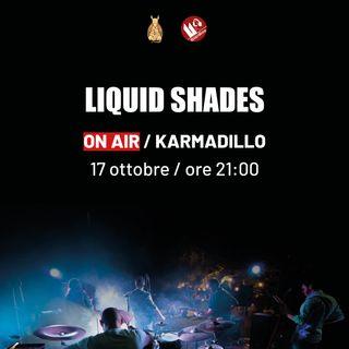 Liquid Shades: rock progressive, atmosferico e a tratti sperimentale - Karmadillo - s03e02