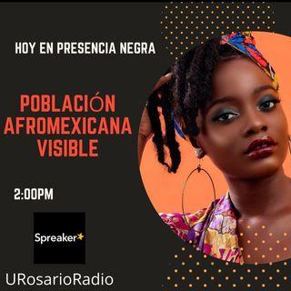 Población afromexicana visible