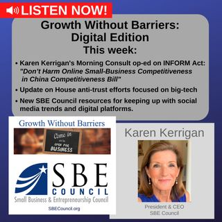 Growth Without Barriers - DIGITAL EDITION: INFORM Act; House anti-trust/big-tech hearings; social media/digital platform tips.