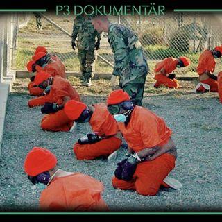 Guantánamo och kriget mot terrorismen