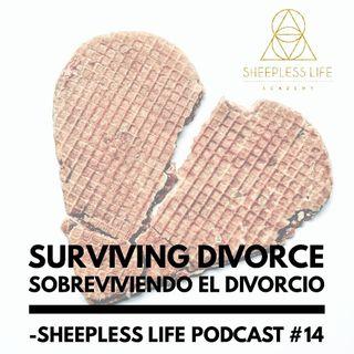014- Sobreviviendo el Divorcio