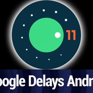 Google Delays Android 11 Beta Event | TWiT Bits