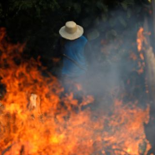 "Amazon rainforest wildfires: ""Our house is burning"""