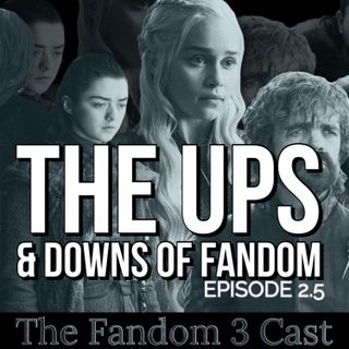 How Fandom Works & The Ups & Downs Of Fandom