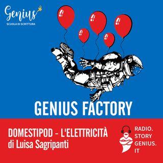 """""""Domestipod - L'elettricità"""" di Luisa Sagripanti"""