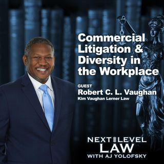 Commercial Litigation & Diversity in the Workplace | Next Level Law Podcast