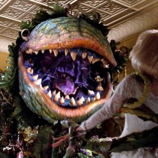 30 - You've Never Seen Little Shop of Horrors!?