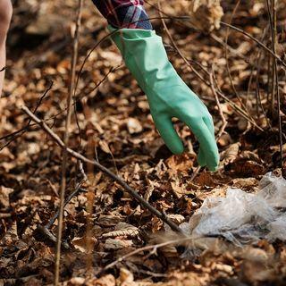 Allarme FAO: la contaminazione del suolo fa perdere il 20% della produttività agricola