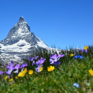 Il dizionario della montagna, Alpi