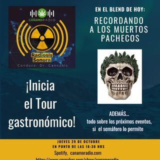 Radiosis Sonora Numero 13