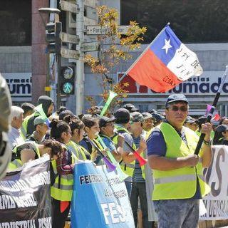 Conexión Pesquera - Noticia: Moción que busca postergar la entrada en vigencia de la Ley de la Jibia duerme en el Congreso