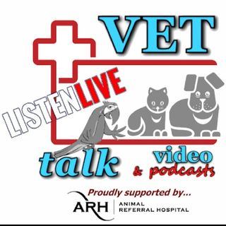 'LIVE' - All About 'Connecting Paws' with Sarah Curtis & Liz Armstrong