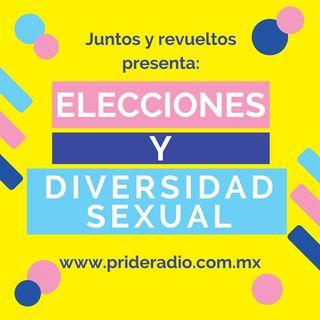 Elecciones y Diversidad Sexual