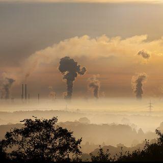 Endangered - Le città polacche più inquinate di Pechino