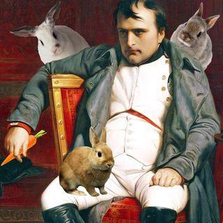 Epsode 1 - Napoleon vs Killwr Bunnies