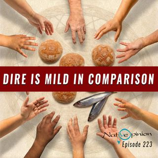 "Episode 223 ""Dire Is Mild In Comparison"""