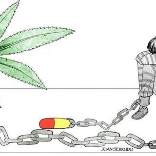 """Drogas y la """"Mota"""""""