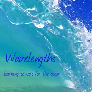 Wavelengths Ocean Podcast