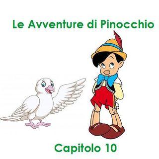 Le Avventure di Pinocchio - Capitolo 10