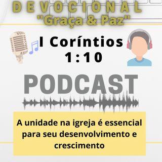 041. A unidade na igreja é essencial para seu desenvolvimento e crescimento
