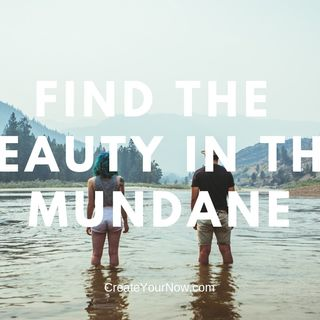1512 Find the Beauty in the Mundane