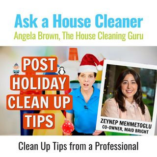 Post Holiday Clean Up Tips from a Professional - Zeynep Mehmetoglu