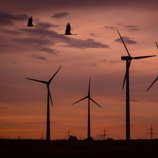 ¿Impactos ambientales de las renovables? Sí, también los tienen; con Jon Domínguez   El Podcast de la Energía #02