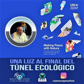 NUESTRO OXÍGENO Una luz al final del túnel ecológico - Químico Luis Manuel Guerra