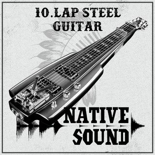 10. Lap Steel Guitar