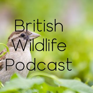 British Wildlife Podcast