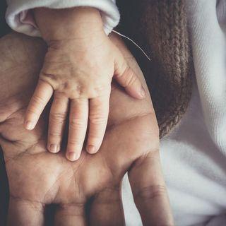 Diario Di Bordo - Prendersi cura di chi ci è padre