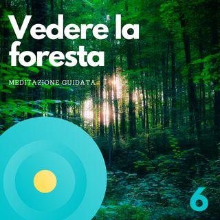 6 - Meditazione Guidata - Vedere la Foresta